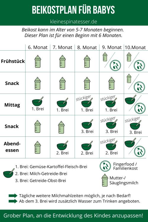 Beikostplan für Babys grafisch dargestellt, zu welcher Mahlzeit was gegessen wird