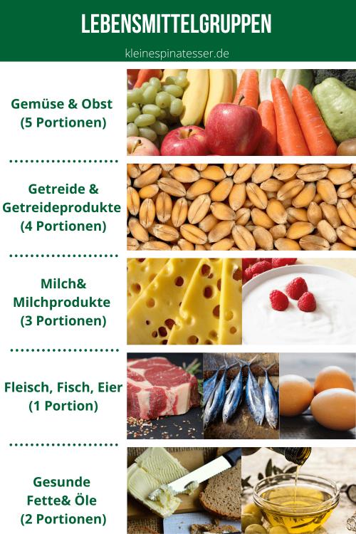 Infographik der 5 Lebensmittelgruppen: Gemüse & Obst, Getreideprodukte, Milchprodukte, Fleisch & Fisch & Eier sowie Fette