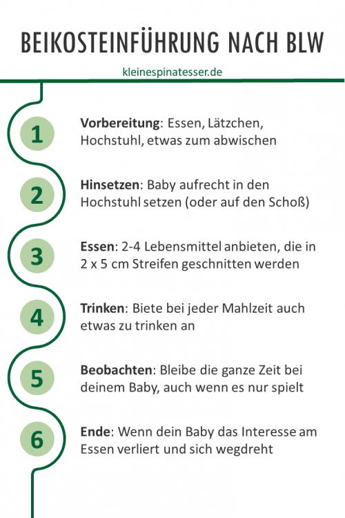 Infografik, welche die 6 Schritte zur Beikosteinführung nach Baby Led Weaning erläutert